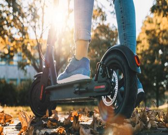 Best Scooters For Adults In 2021