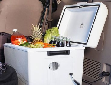 Best Portable Electric Cooler In 2021